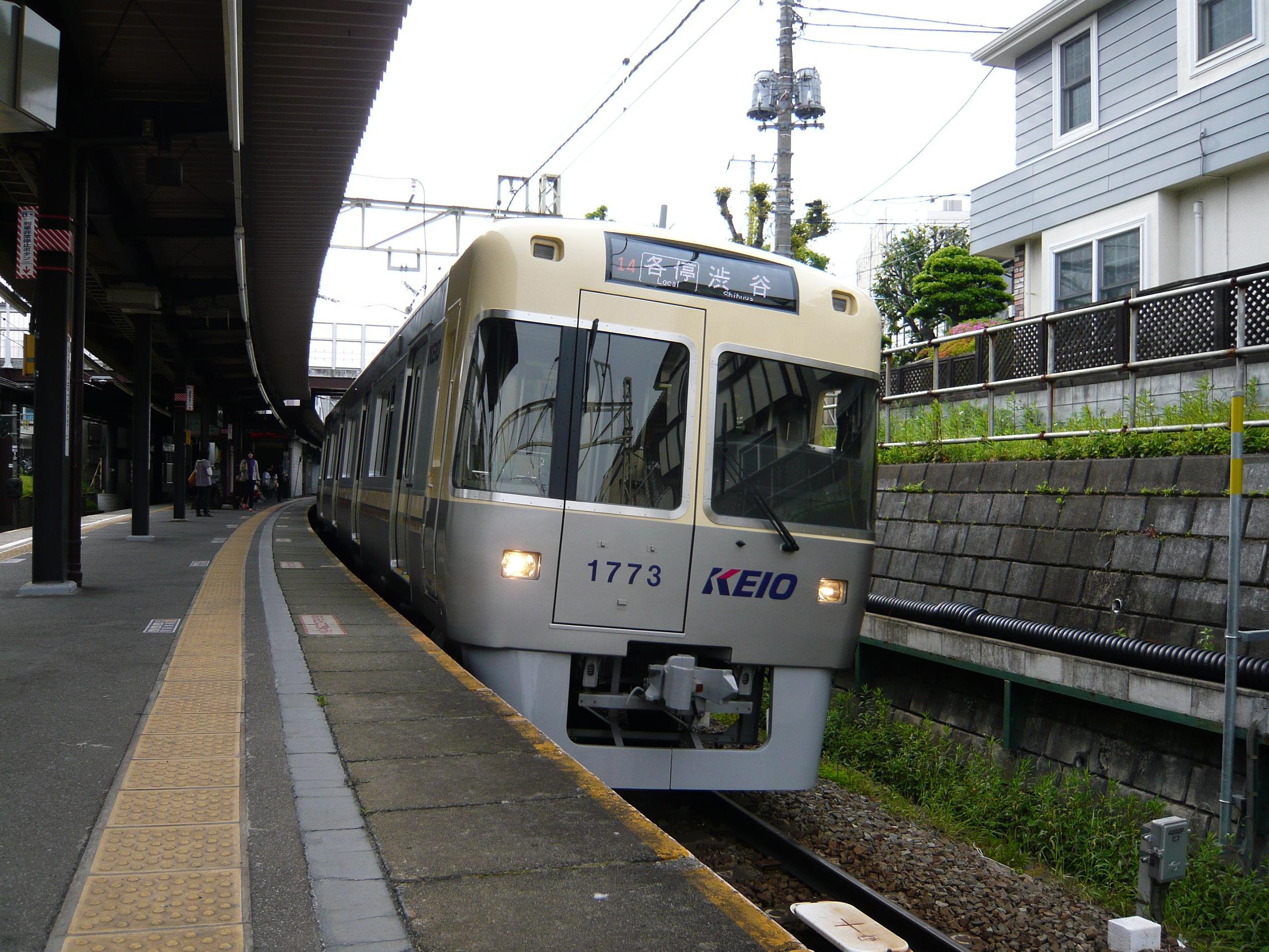P1010681-2.JPG